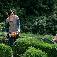 Stihl hedgetrimmers at C&O Garden Machinery