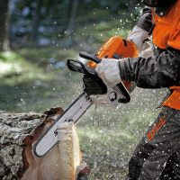 STIHL Chainsaws & Pole pruners at C&O Garden Machinery