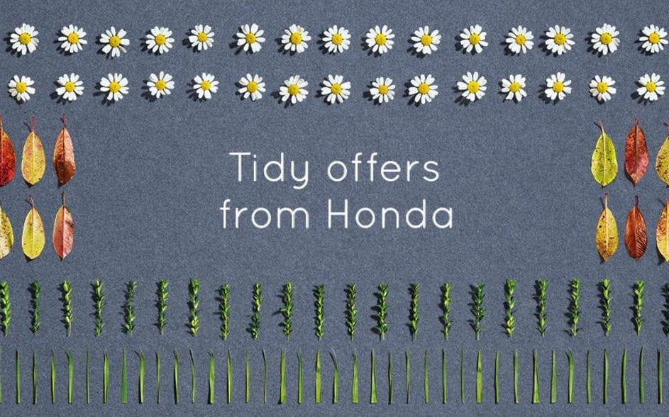 Honda Tidy Offers